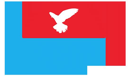 Taoufik Reizen Logo Origineel